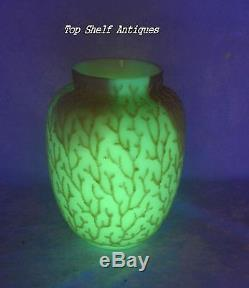TS 1880-90 Mt. Washington Coralene Seaweed Uranium Glow Vase Rose Blue